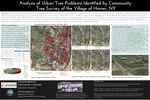 Analysis of Urban Tree Problems Identified by Community Tree Survey of the Village of Homer, NY. by Connor Brierton