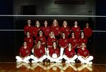 Team Photograph, Volleyball by State University of New York College at Cortland