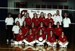 Team Photograph, Volleyball